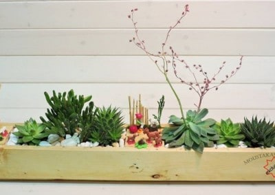 Succulents arrangement playmobil