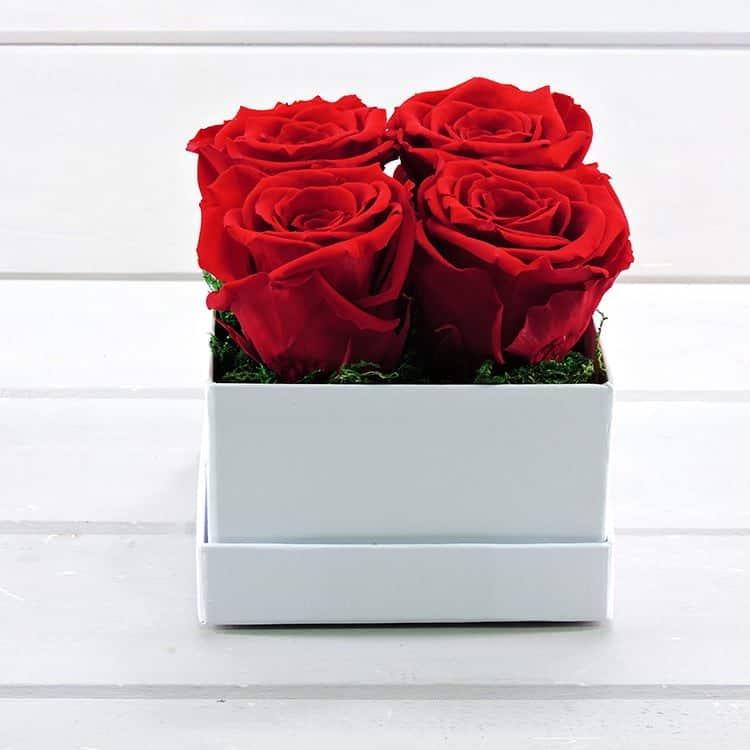 4Love (forever roses)