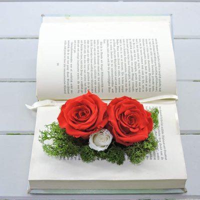 Eternity roses σε βιβλίο