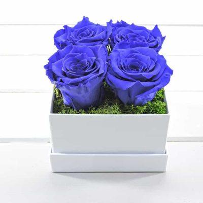 μπλέ τριαντ'αφυλλα forever roses σε κουτι