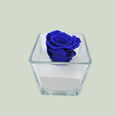 Glass cube(forever rose)